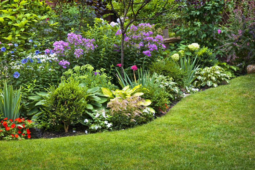 summer-garden-services-north-london