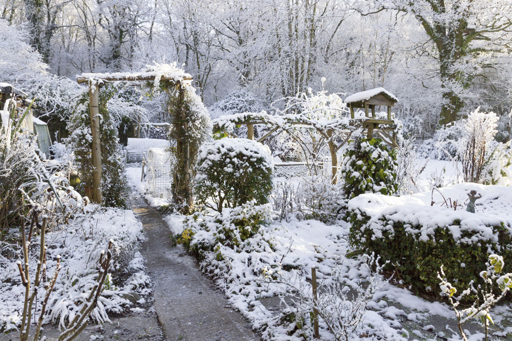 winter-garden-north-london